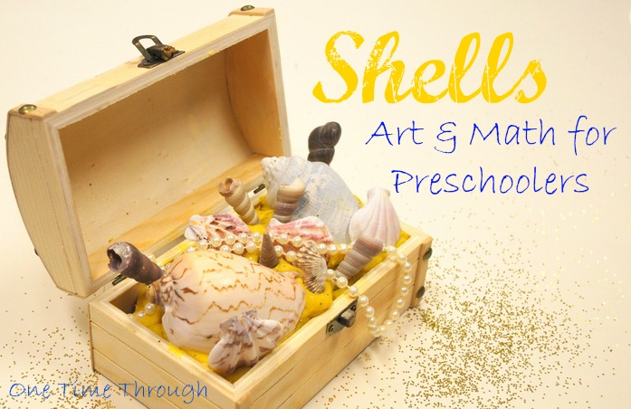 Shells Art and Math