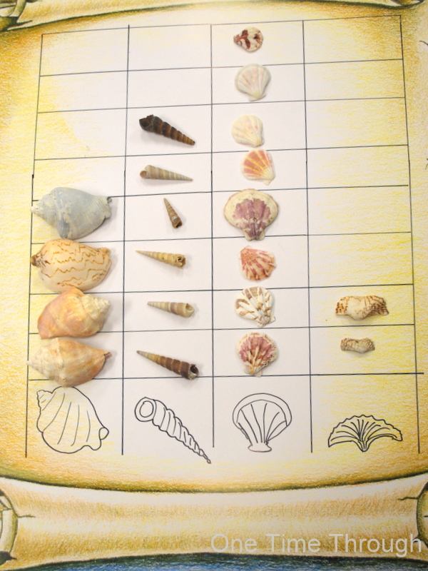 Shell Math Pictograph