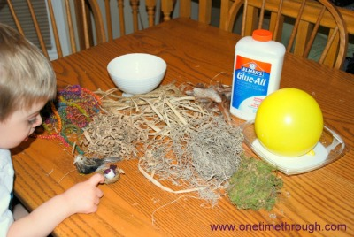 Materials for Birds Nest Craft