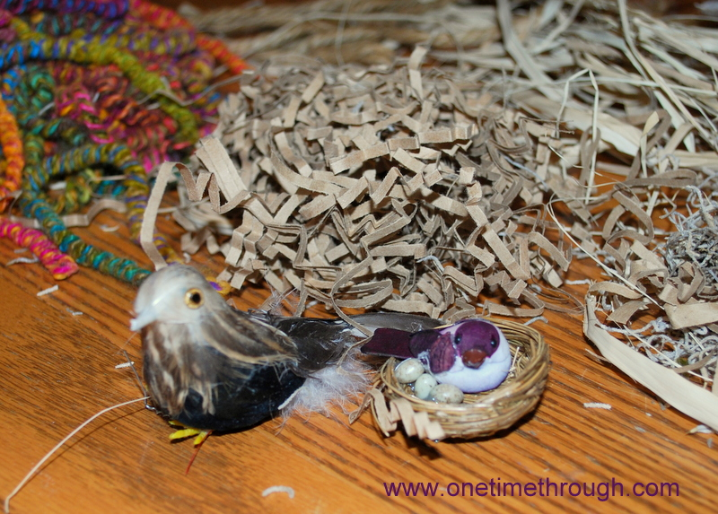 Diy Birds Nest Science And Craft One Time Through