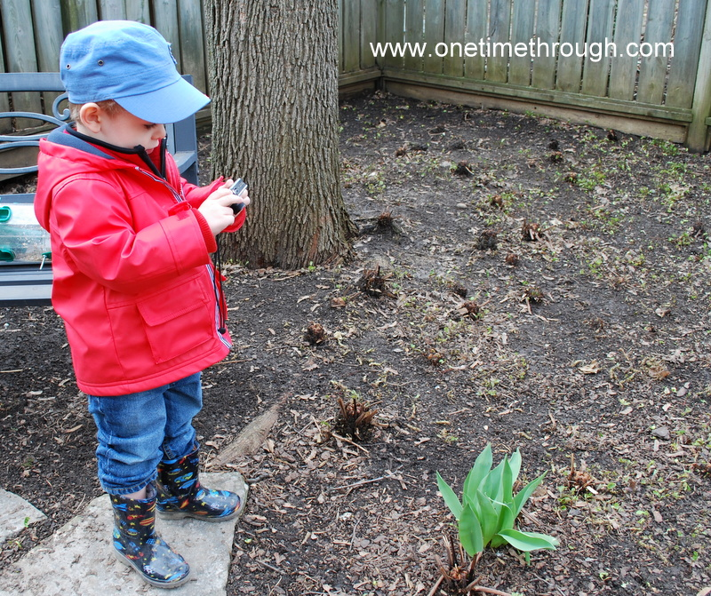 seeds and spring hunt and easter hunt 100