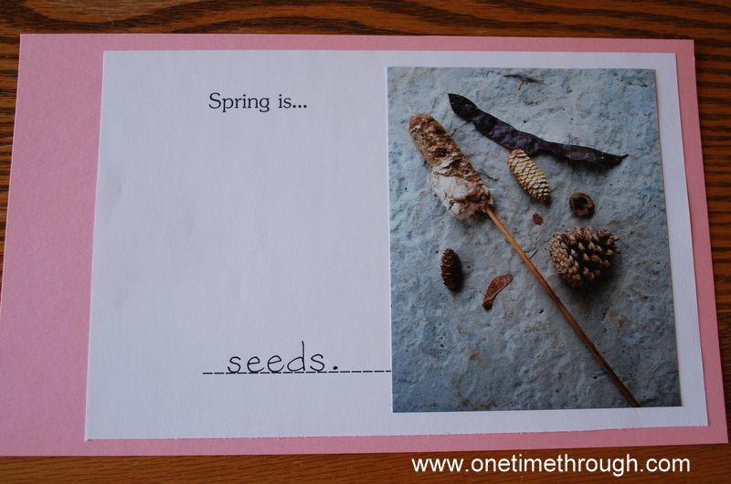 Spring Is Book 008