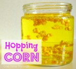 Hopping Corn Experiment