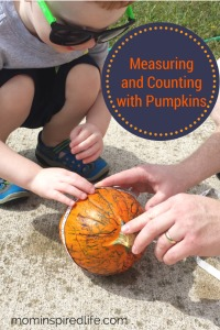 Measuring and Counting with Pumpkins