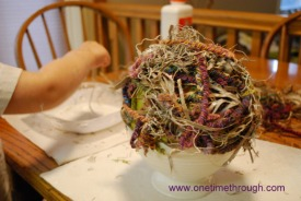 Birds Nest Science and Craft