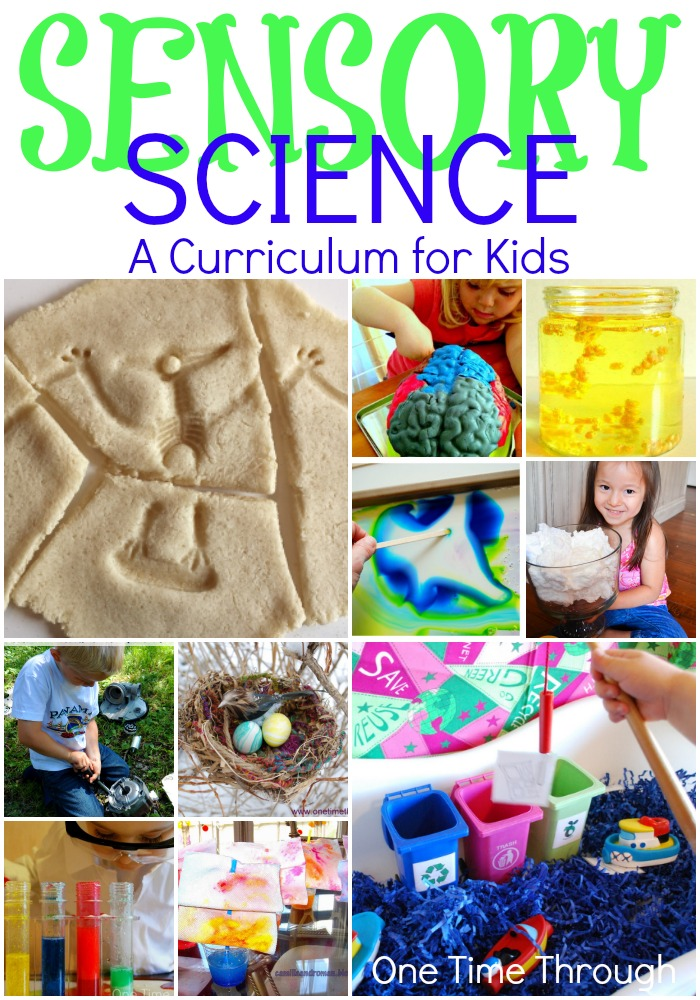 Sensory Science - A Curriculum For Kids