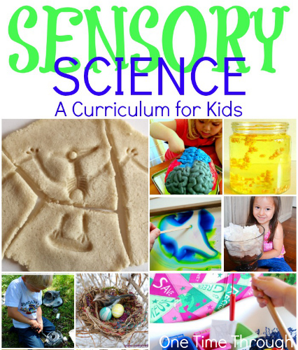 Sensory Science Curriculum