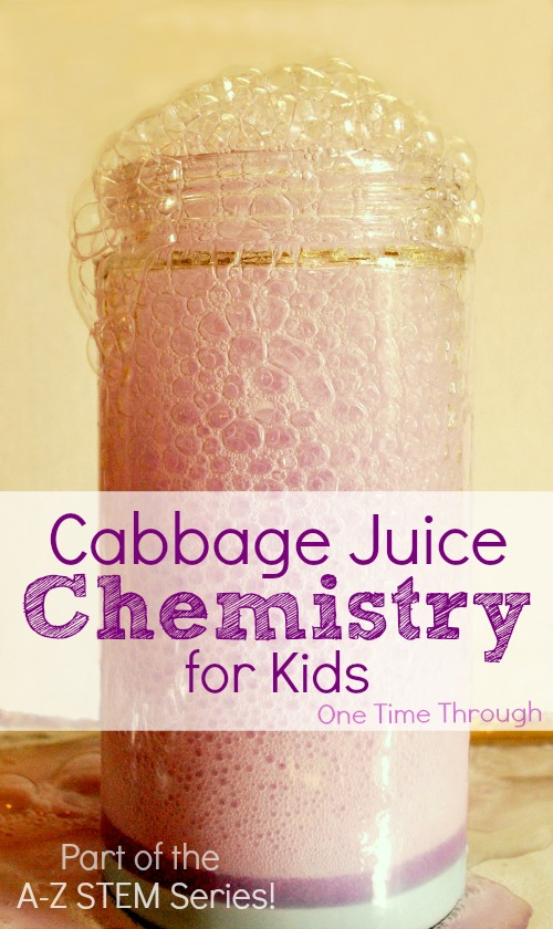 Cabbage Juice Chemistry for Kids