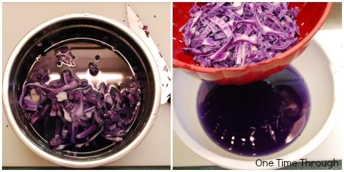 Making Cabbage Juice