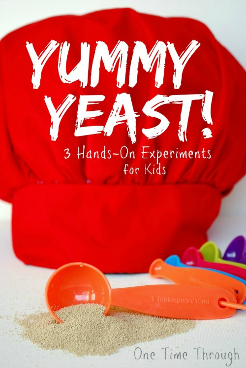 Yummy Yeast Hands On Experiments for kids