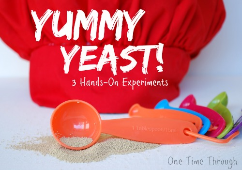 Yummy Yeast Hands On Experiments