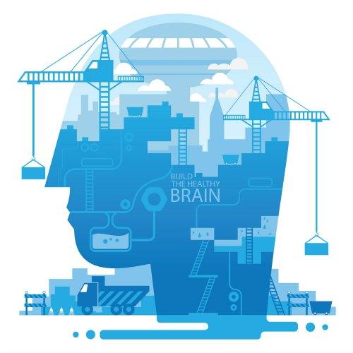 Brain Under Construction