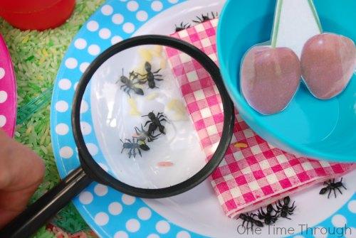 Ants and Picnics