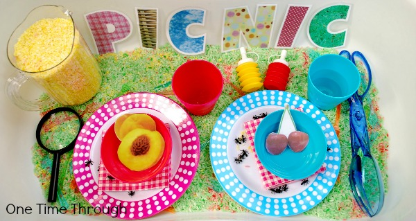 Picnic Play Sensory Bin