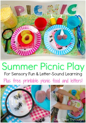 Summer Picnic Play