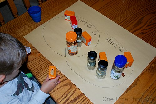 Venn Diagram Sorting Spices