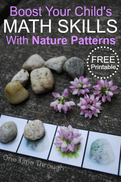 Boost Math Skills with Nature Patterns