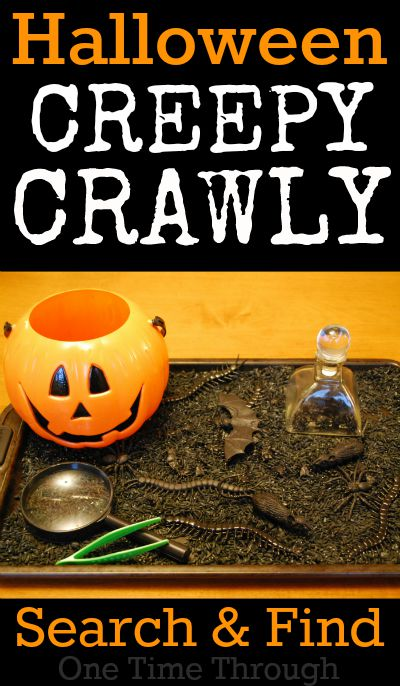 Halloween Creepy Crawly Search and Find
