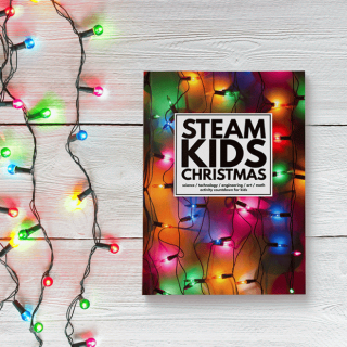 STEAM Kids Christmas book