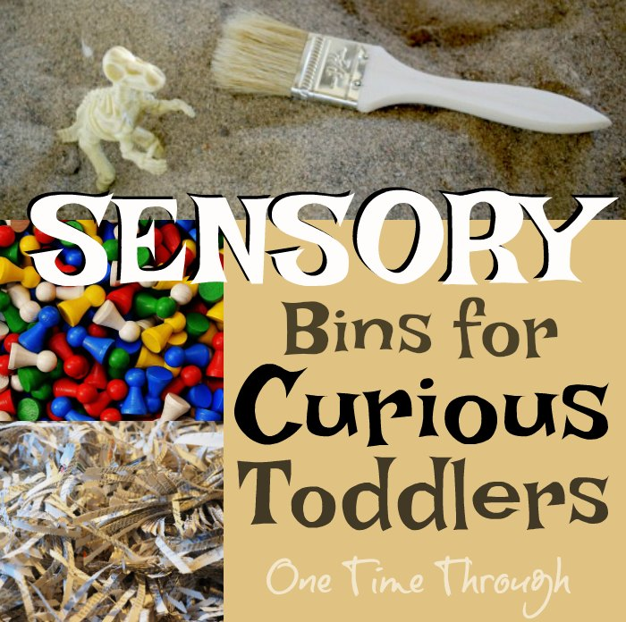 Sensory Bins for Curious Toddlers FB