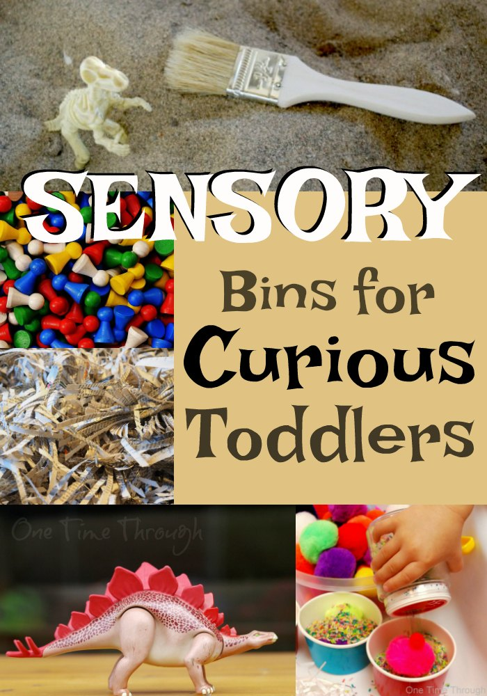 Sensory Bins for Curious Toddlers